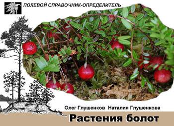 """Обложка книги """"Растения болот: Карманный определитель"""""""