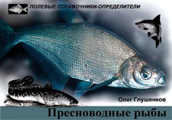 Обложка книги Пресноводные рыбы: Карманный определитель
