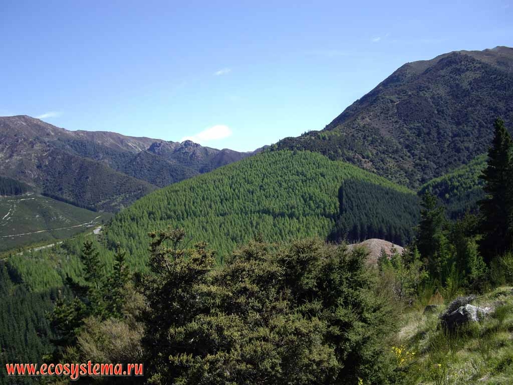 New Zealand (South Island) natural landscapes and nature ...