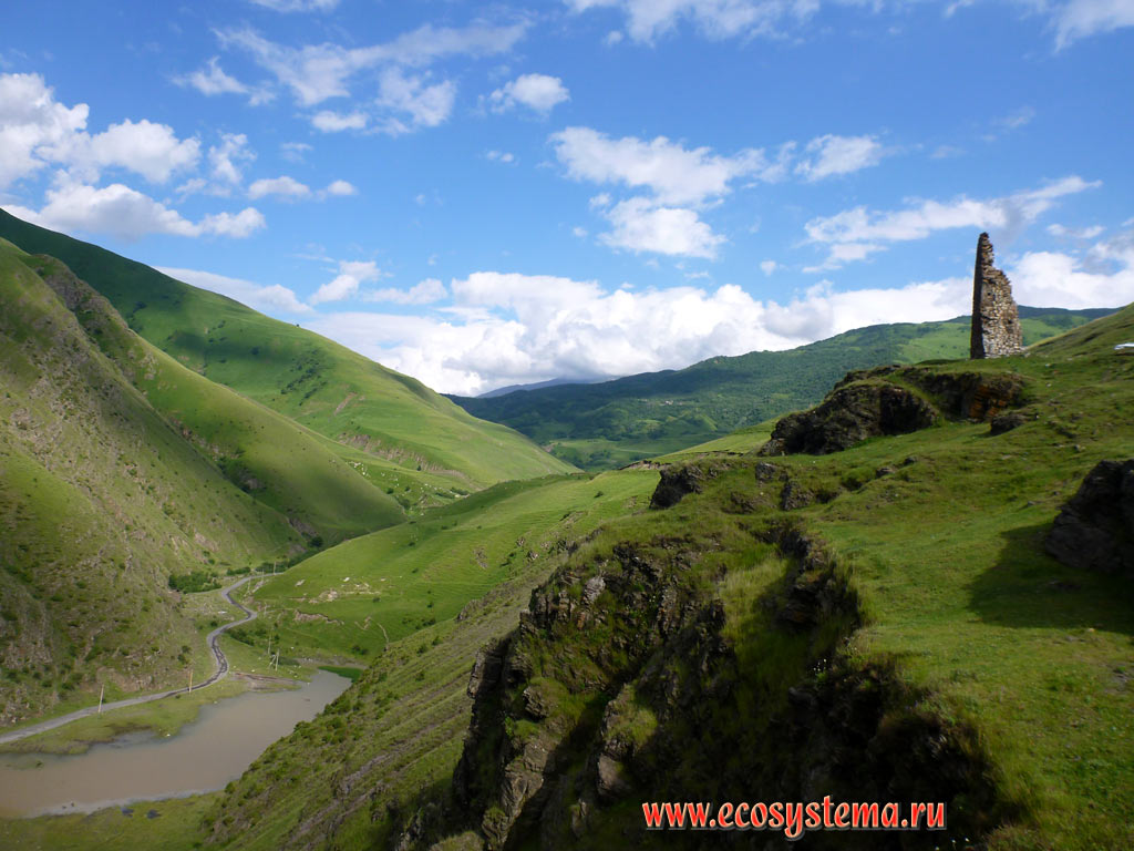 The valley of the river Fiagdon with subalpine and Alpine meadows and ruins of the watchtower on the outskirts of the village of Upper Fiagdon in the foothills of the Greater Caucasus