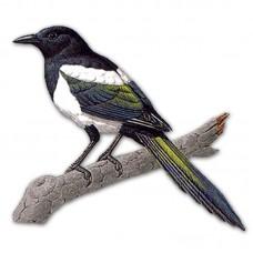 Компьютерный определитель птиц и птичьих гнезд (на компакт-диске для PC-Windows)